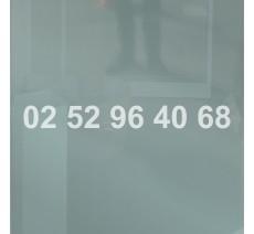 Numéro de téléphone en vinyle