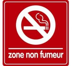Pictogramme plexi couleur zone non fumeur