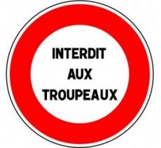 """Kit ou panneau seul type routier """"Interdit aux troupeaux"""" ref: B19"""