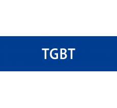 """Plaque de porte """"TGBT"""" en alu ou pvc, plusieurs coloris"""