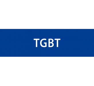 """Plaque de porte en alu gravé """"TGBT"""""""