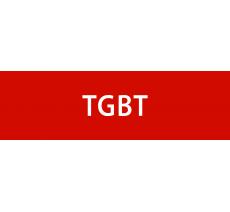 "Plaque porte avec relief ""TGBT"""