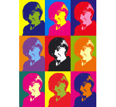 "Impression style ""Andy Warhol"" dim: 250x180mm"