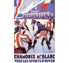 """Publicité Vintage  """"Chamonix Mont Blanc Hockey"""" sur plaque alu"""