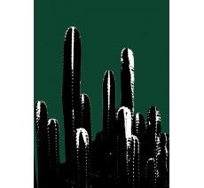 Buisson de cactus avec filtre Andy Warhol