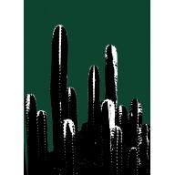 Tableau de cactus