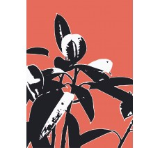 Tableau Plante grasse