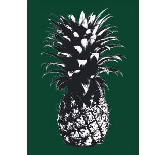 Ananas avec filtre Andy Warhol