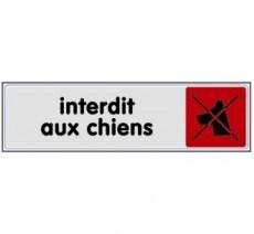 Plaque de porte plexi couleur interdit aux chiens